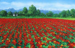 Campo di escolzia nella campagna pancalierese - Olio su tela 30x20